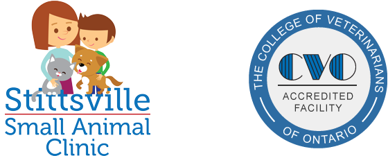 Logo for Stittsville Small Animal Clinic in Stittsville, ON